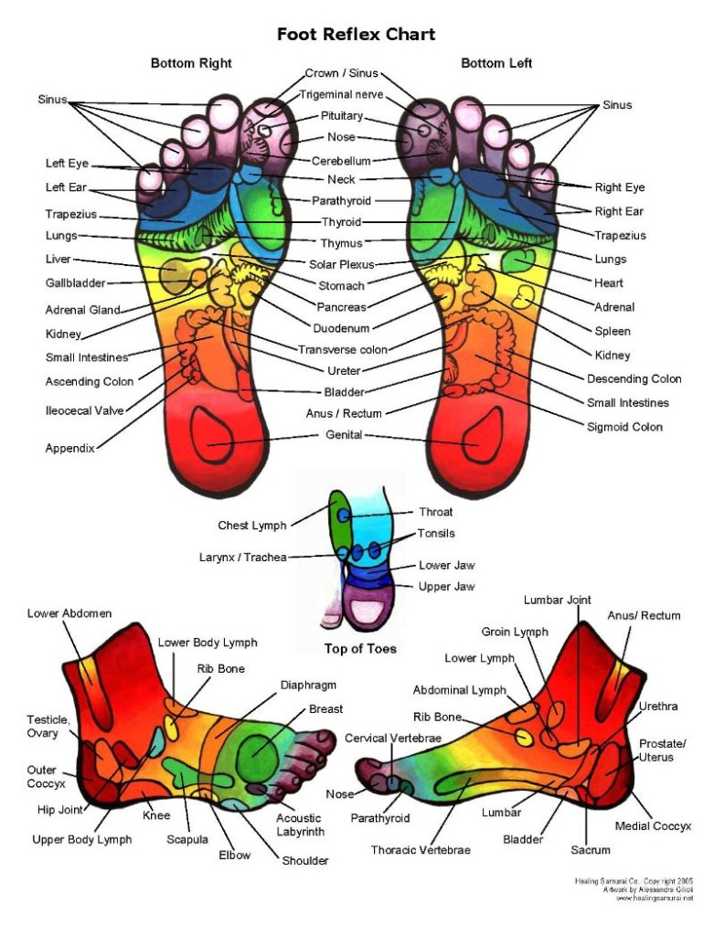 The Foot Spa Reflexology Chart for Feet
