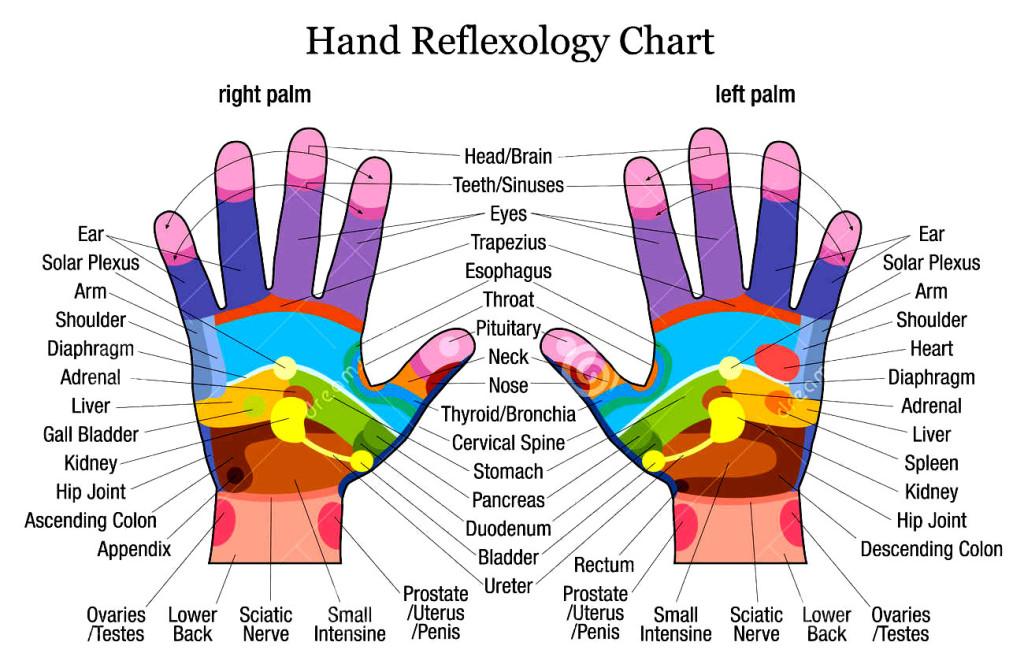 hand-reflexology-chart
